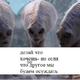 Аватар пользователя nikomuizkon