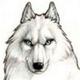 Аватар пользователя Engardium