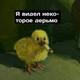 Аватар пользователя Anzzorchik