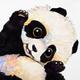 Аватар пользователя kjang777