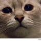 Аватар пользователя Kimry