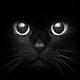 Аватар пользователя Polinanata12168