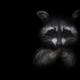Аватар пользователя Nicholson