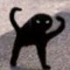 Аватар пользователя NoShitSherlock