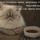Аватар пользователя Bylichka