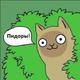 Аватар пользователя CaptainSlut