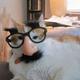 Аватар пользователя heyheychel