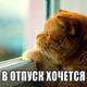 Аватар пользователя Nozdrik