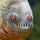 Аватар пользователя IharokBLR