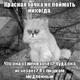 Аватар пользователя Ksunets