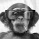 Аватар пользователя PaulRobson