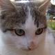 Аватар пользователя ksardas2015
