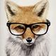 Аватар пользователя FoxTorri