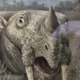 Аватар пользователя nastasjatufelka
