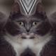 Аватар пользователя Killmorning