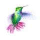 Аватар пользователя Willow1