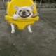 Аватар пользователя 21MetR