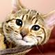 Аватар пользователя TitusPuIIo