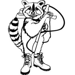 RaccoonsBoots