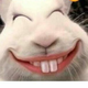 Аватар пользователя kapeztut