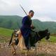 Аватар пользователя VasyaAlibabai4