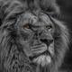 Аватар пользователя Sanchos34