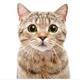 Аватар пользователя pechatnik111