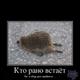 Аватар пользователя KAliSOK