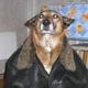 Аватар пользователя hlopchek