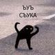 Аватар пользователя Kotism