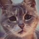 Аватар пользователя Netskykzn