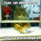 Аватар пользователя Bahh