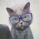 Аватар пользователя Wenhester