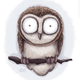 Аватар пользователя kutahelen