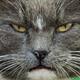 Аватар пользователя Uralparen