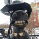 Аватар пользователя TimBross