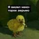 Аватар пользователя Beskletochnii