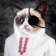 Аватар пользователя Soboleffff