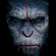 Аватар пользователя MrMrsSmith