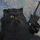 Аватар пользователя maksoid61