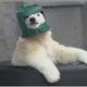 Аватар пользователя polyaa0