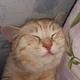 Аватар пользователя Mamont1990