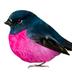 Ptichchka