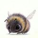 Аватар пользователя ShmelSPb