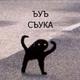 Аватар пользователя reson