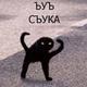 Аватар пользователя Guineu