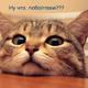 Аватар пользователя Honour88