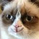 Аватар пользователя Marunko98