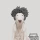 Аватар пользователя Shiny54murder