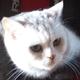 Аватар пользователя Burzhuin